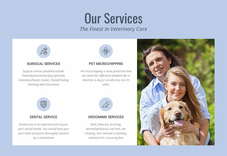 24hr veterinary advice Website Template