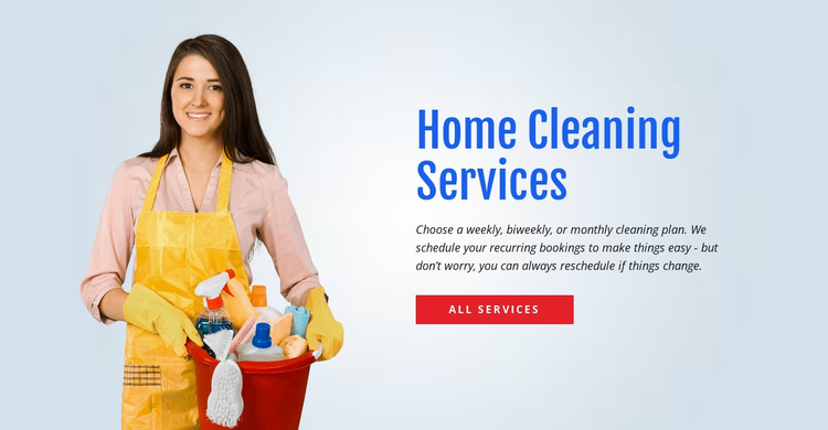 Wash and sanitize the toilet Website Template