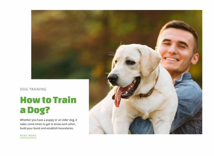 Dog training club Website Template