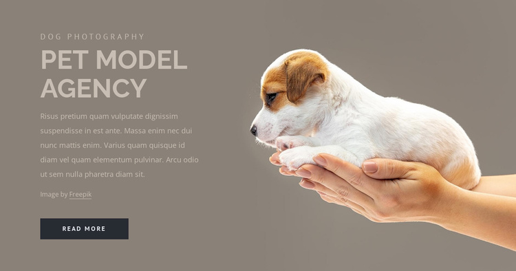 Pet model agency Website Template