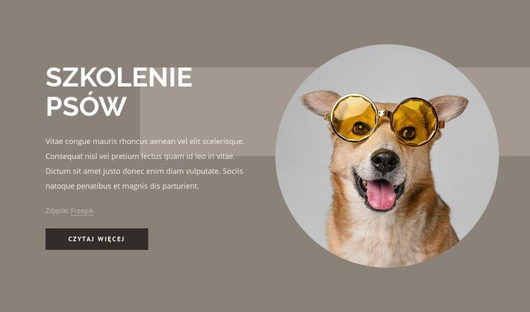 Wskazówki dotyczące szkolenia psów Szablon witryny sieci Web