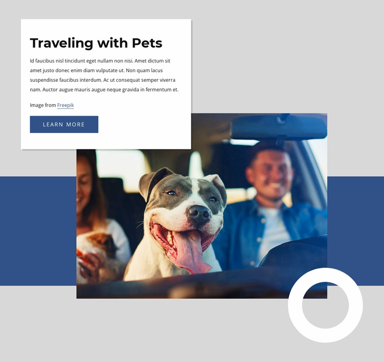 Traveling with pets Website Mockup