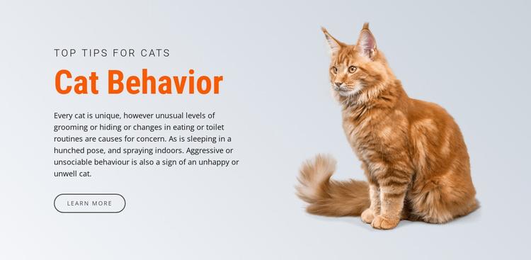 Cat behavior HTML Template