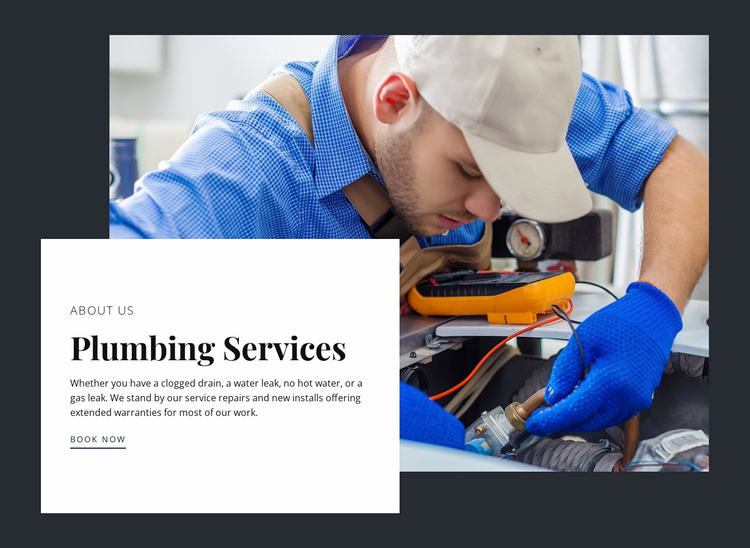 Kitchen remodeling by expert plumbers Website Template