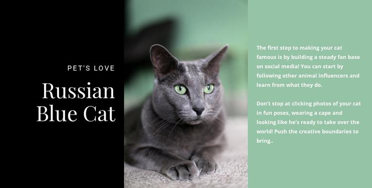 Russian blue cat HTML Template