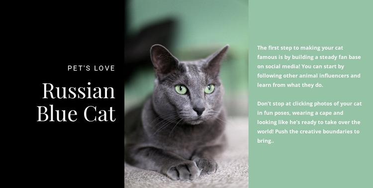 Russian blue cat Website Mockup