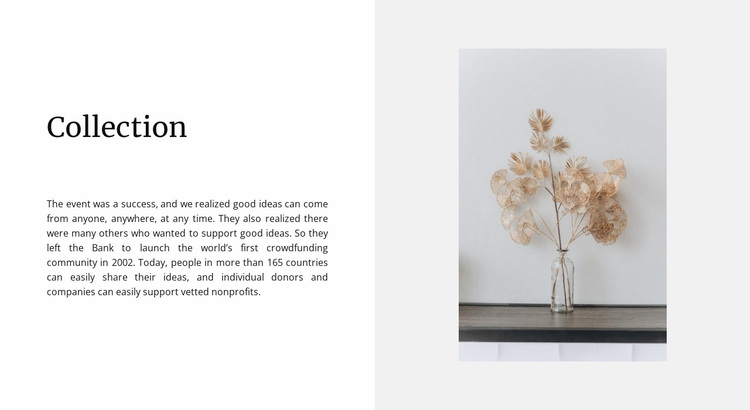 Home collection Website Design
