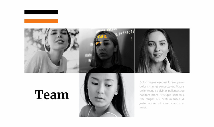 Stylist team Website Template