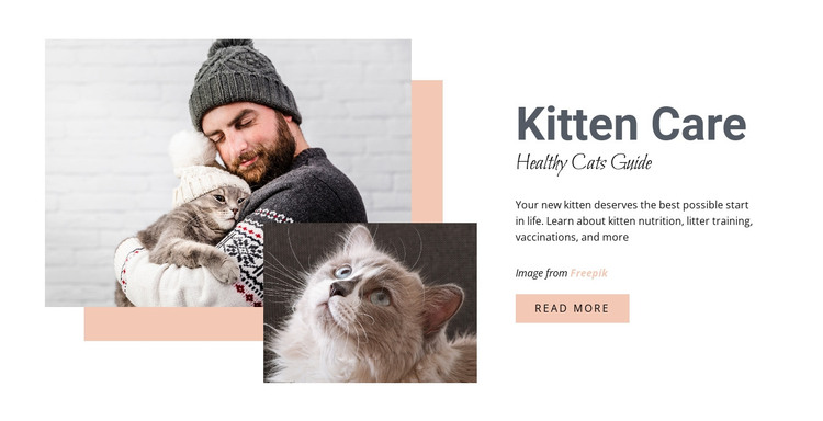 Caring for your cat HTML Template