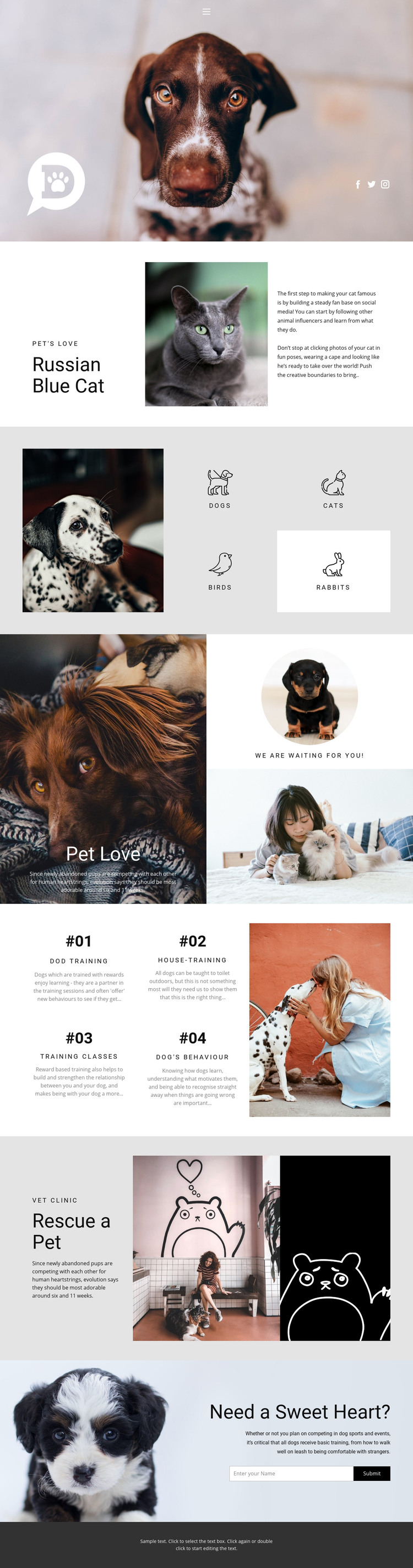 Care for pets and animals Homepage Design