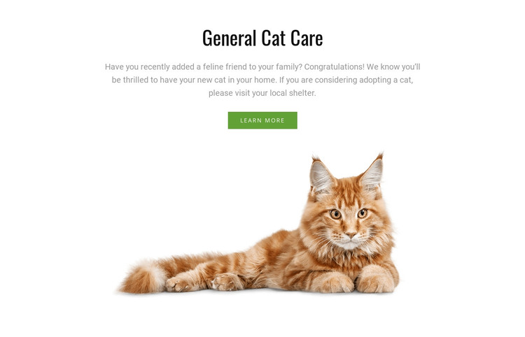 Cat grooming tips HTML Template