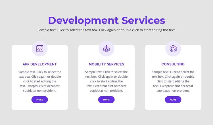 Our development services WordPress Theme