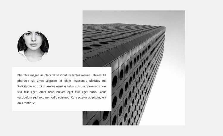 Construction specialist opinion Website Template