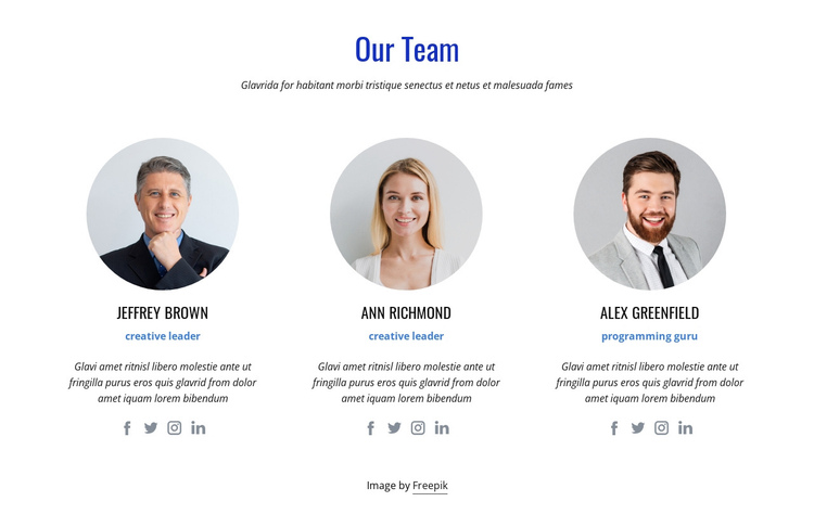An international team of experts One Page Template