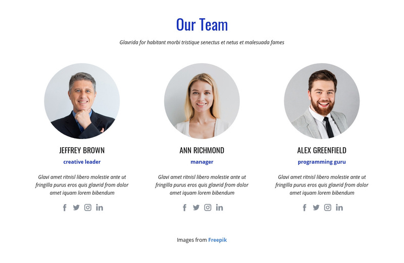 An international team of experts Web Page Design