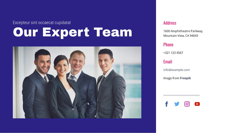 Our expert team Joomla Template