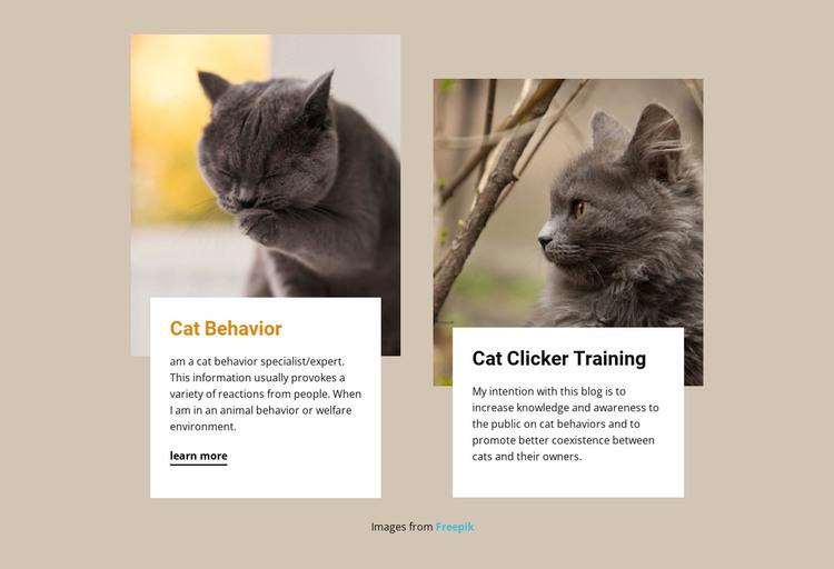 Training stimulates a cat's mind HTML Template