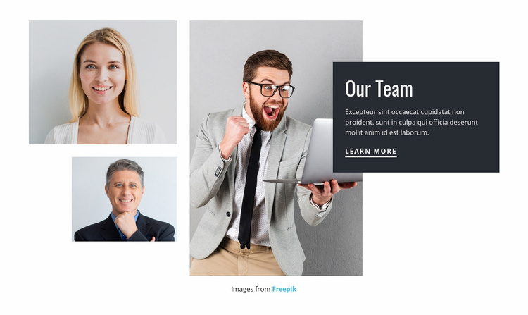 Meet the consulting team Website Template