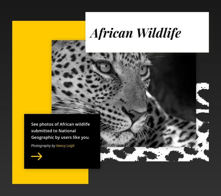 Best wildlife photos HTML Template