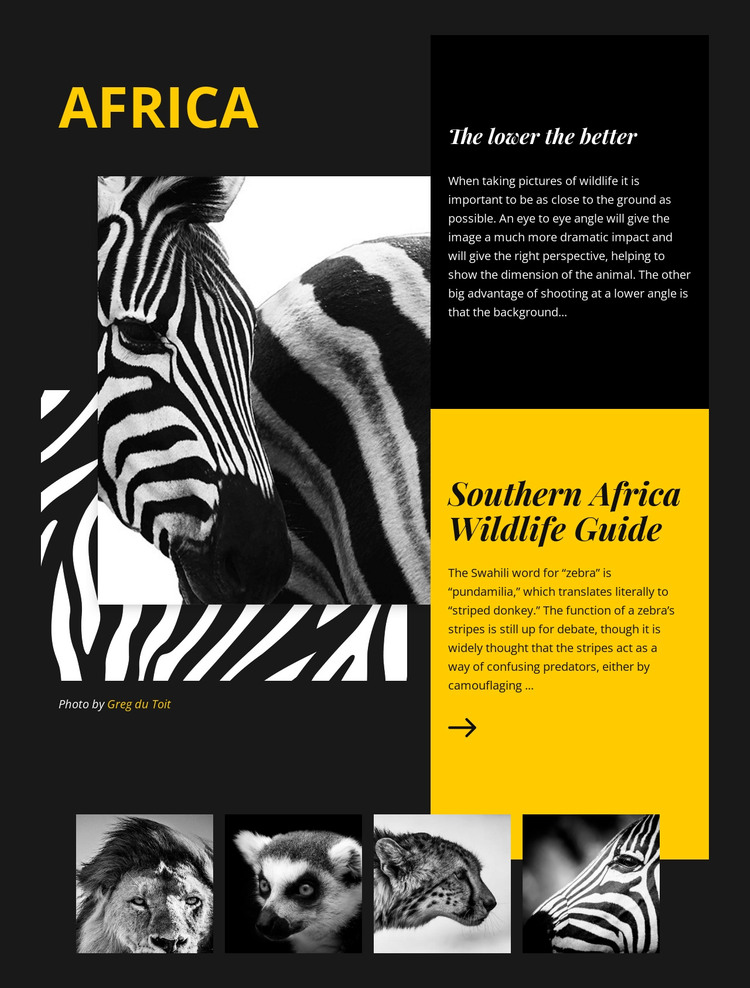 Africa Wildlife Guide HTML Template