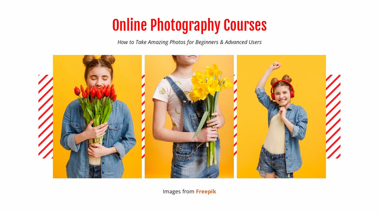 Online Photography Courses Website Template