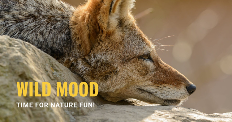Wild mood Website Template
