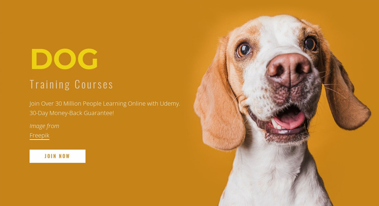 How to train your dog Website Builder
