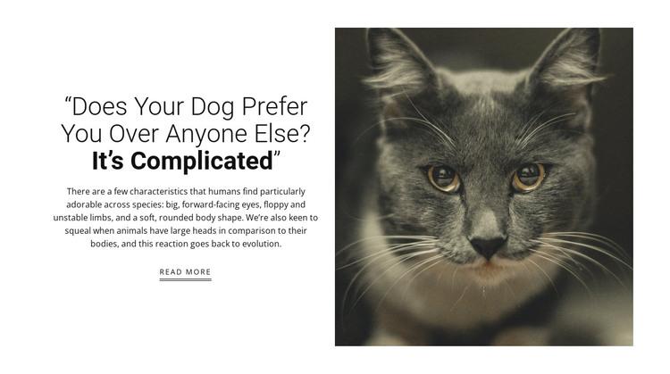 Pet's stories HTML Template