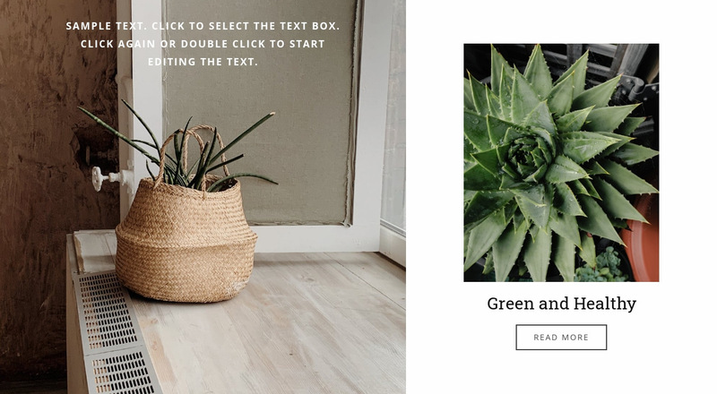 Green and healthy Web Page Designer
