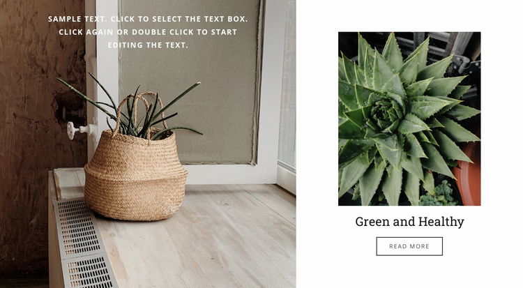 Green and healthy Website Template