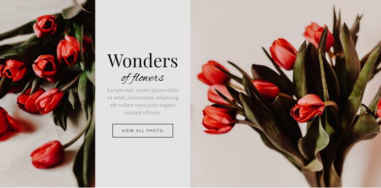 Wonders flower HTML Template