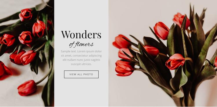 Wonders flower Website Template