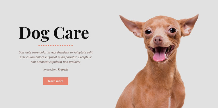Dog healthy habits HTML Template