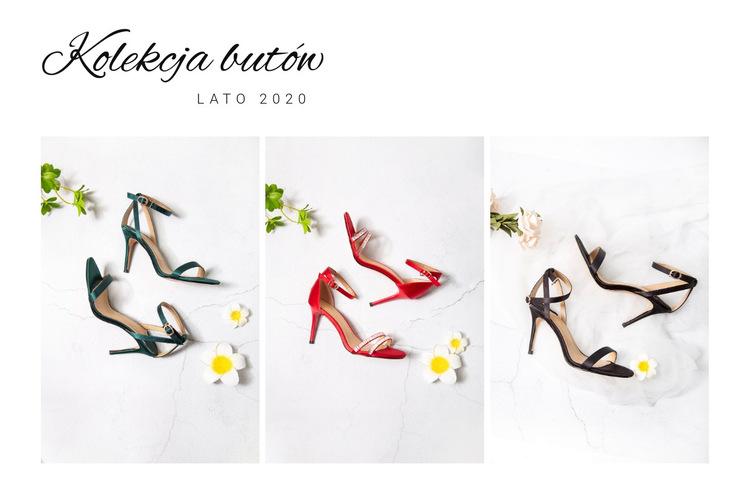 Kolekcja butów Szablon witryny sieci Web