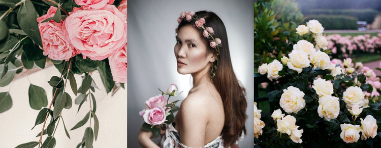 Roses in fashionable images HTML5 Template