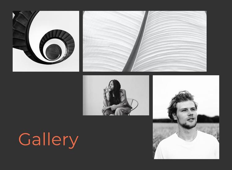 Unusual gallery Website Template