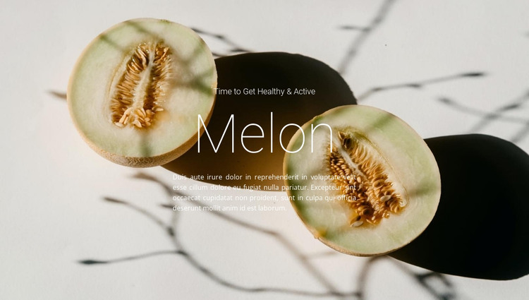 Melon recipes HTML Template