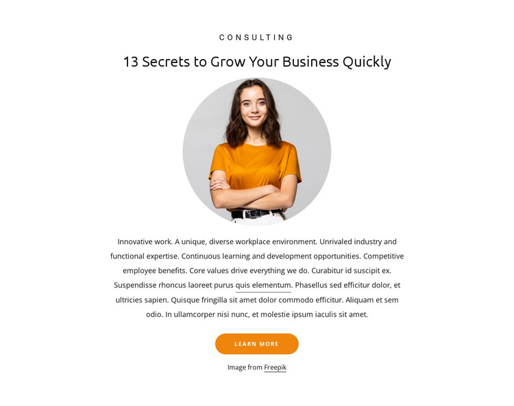 13 Secrets to grow business HTML Template