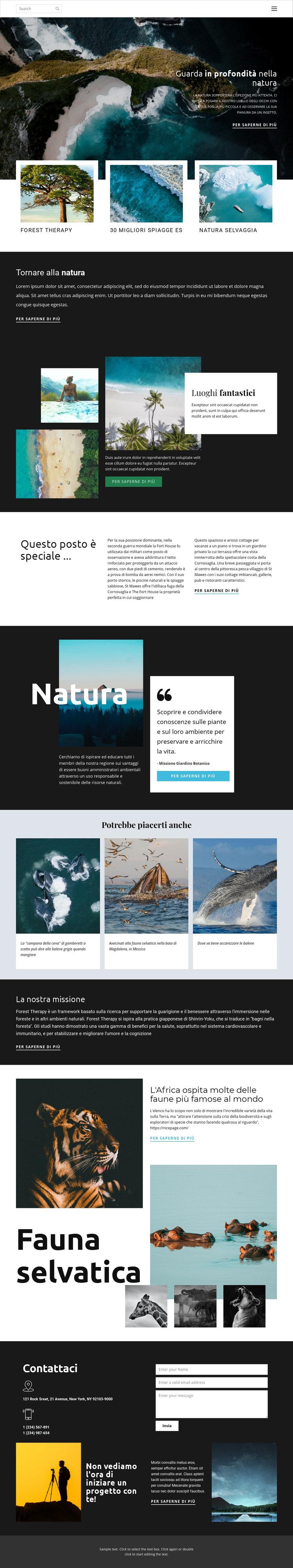 Esplorare la fauna e la natura Modello di sito Web