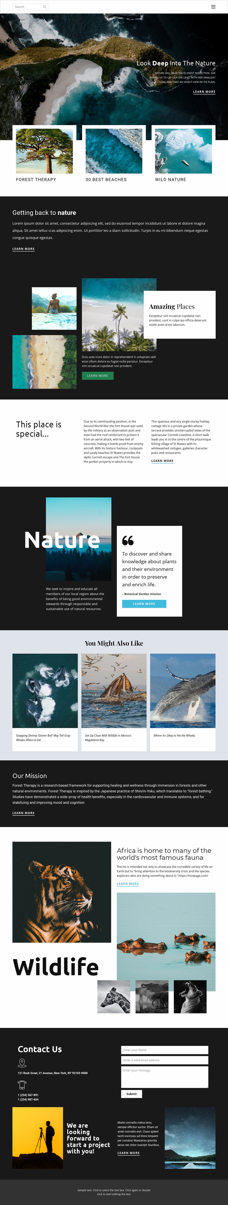 Exploring wildlife and nature Web Page Design