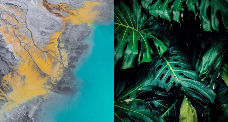 Nature gallery WordPress Theme