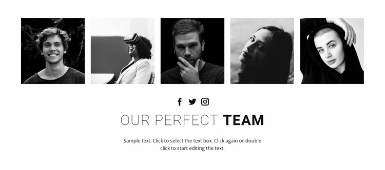 Our perfect team Website Mockup
