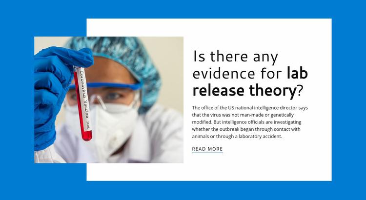Lab Release Theory WordPress Website