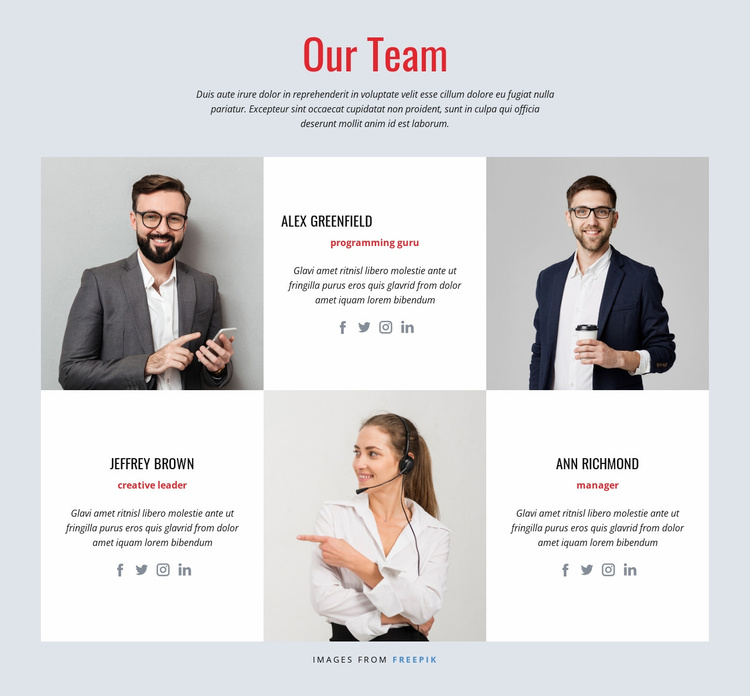 Our Team Website Template