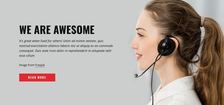 Awesome support CSS Template