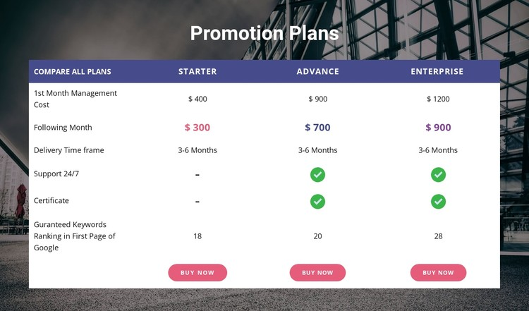Our promotion plan CSS Template