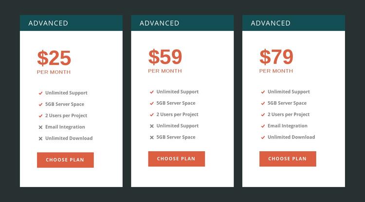 Premium pricing WordPress Theme