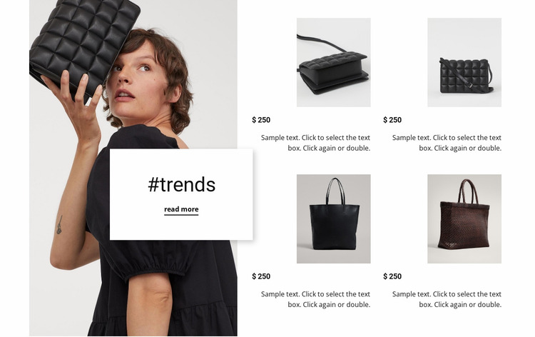 New trends new bags Website Mockup