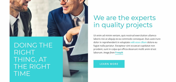We are the Experts in Quality Projects Website Template