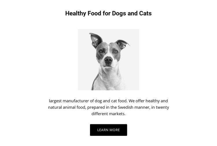 Healthy eating for dog HTML Template